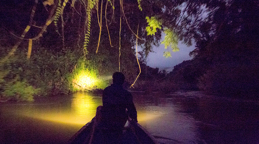 Nam Nern Night Safari, Nam Et – Phou Louey, Лаос